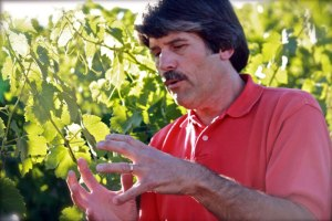 As his skills mature, Bowker continues to focus on the details of winemaking but has learned to balance analytic chemistry in the lab and the creative 'gut feelings' of the best vintners.